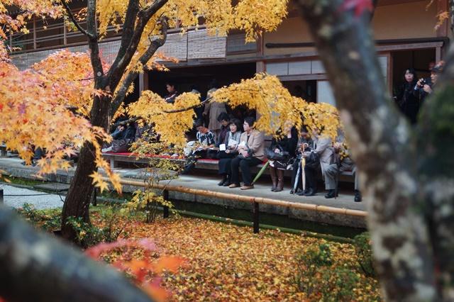 圓光寺・神社仏閣を訪ねる旅、圓光寺京都のお寺を訪ねる紅葉の美しさ_d0181492_15561084.jpg
