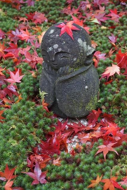 圓光寺・神社仏閣を訪ねる旅、圓光寺京都のお寺を訪ねる紅葉の美しさ_d0181492_1559503.jpg
