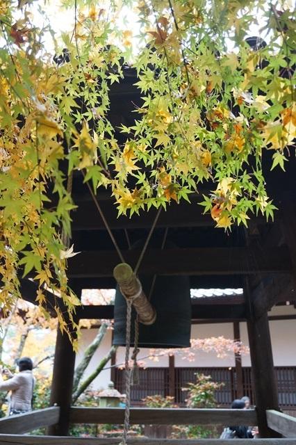古都京都圓光寺の日本庭園美しさにびっくり、徳川家康縁のお寺京都・圓光寺_d0181492_1623619.jpg