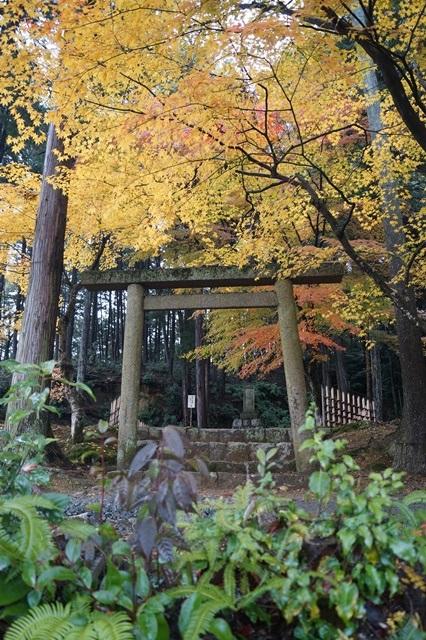 古都京都圓光寺の日本庭園美しさにびっくり、徳川家康縁のお寺京都・圓光寺_d0181492_16282788.jpg