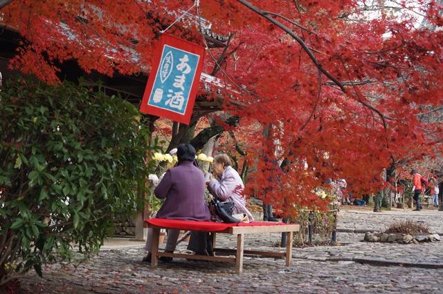 藤田八束の京都・真正極楽寺真如堂を訪ねて①_d0181492_1752436.jpg