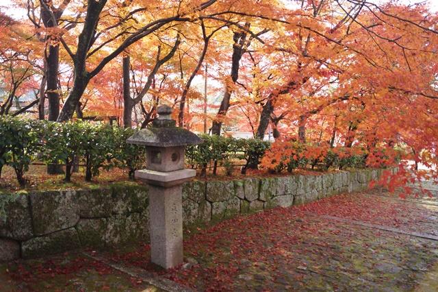 藤田八束の京都・真正極楽寺真如堂を訪ねて①_d0181492_175470.jpg