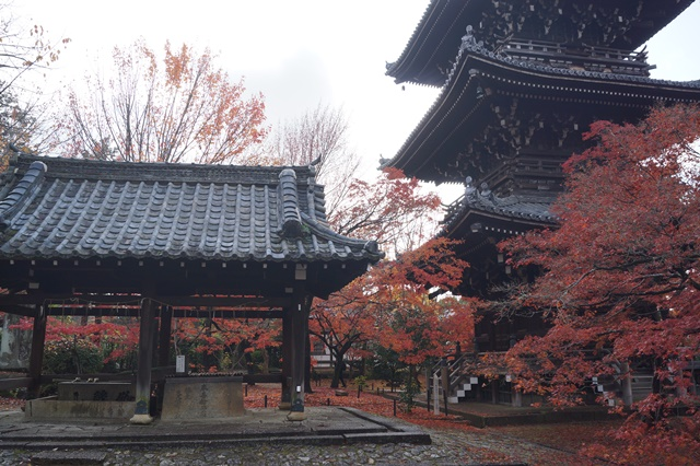 藤田八束の京都・真正極楽寺真如堂を訪ねて①_d0181492_176283.jpg