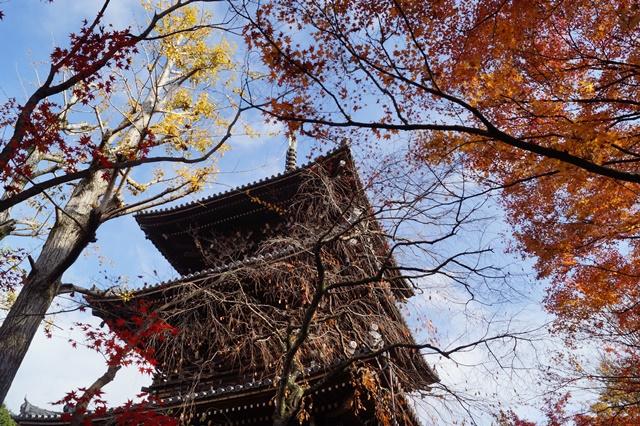 藤田八束の京都・真正極楽寺真如堂を訪ねて①_d0181492_1771532.jpg