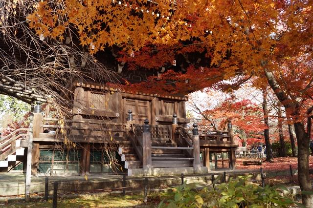 藤田八束の京都・真正極楽寺真如堂を訪ねて①_d0181492_1773782.jpg