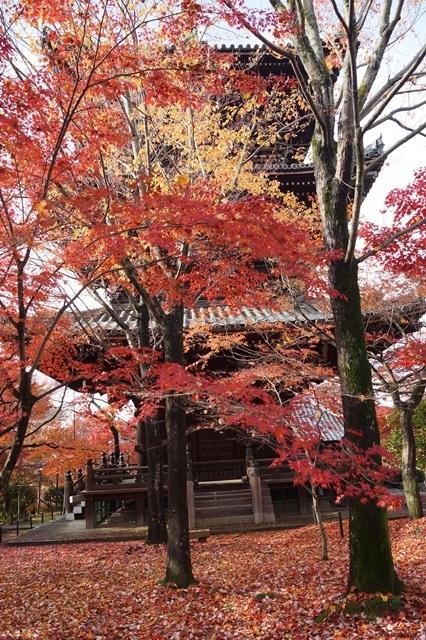 藤田八束の京都・真正極楽寺真如堂を訪ねて①_d0181492_178409.jpg