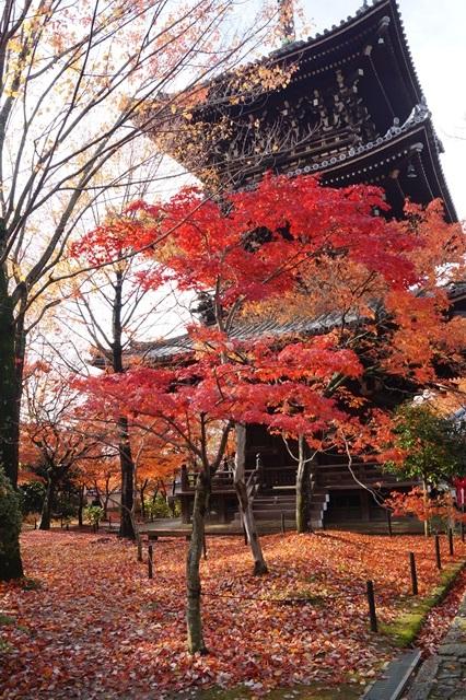 藤田八束の京都・真正極楽寺真如堂を訪ねて①_d0181492_1785872.jpg