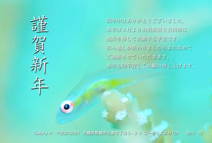 b0132194_16162632.jpg