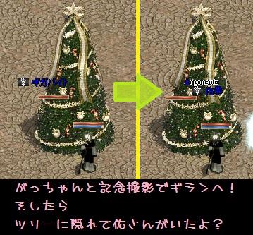 f0072010_1565436.jpg