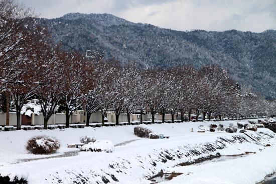 鴨川雪景色_e0048413_1731659.jpg
