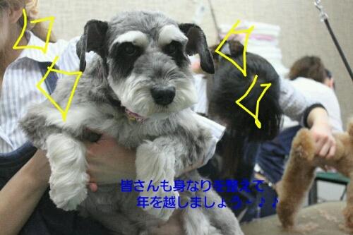 新年!!!_b0130018_163443100.jpg