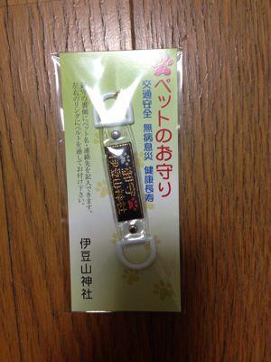 伊豆山神社で初詣 2015年_f0101201_19762.jpg
