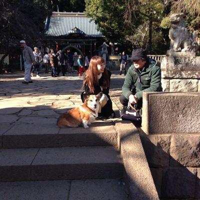 伊豆山神社で初詣 2015年_f0101201_197633.jpg