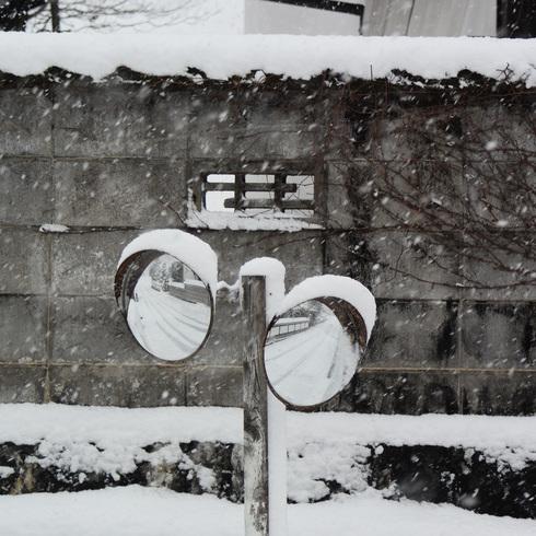寒波がやってきた_f0099102_1523298.jpg