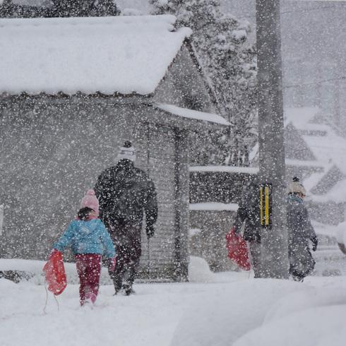 寒波がやってきた_f0099102_1523596.jpg