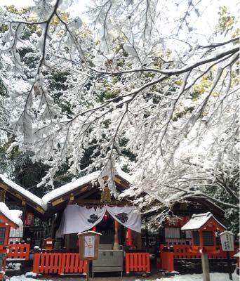 雪国_a0167912_10522735.jpg