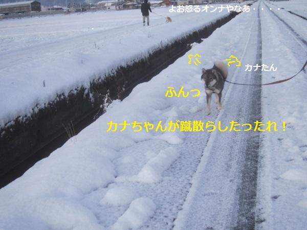 f0143123_10194135.jpg