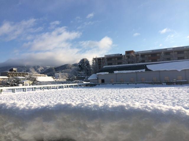 雪の正月_f0161323_17491340.jpg