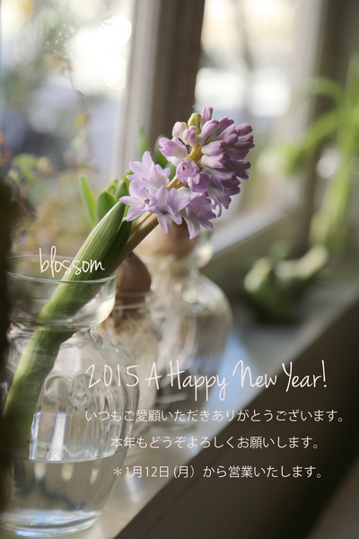 A Happy New Year !_a0229658_1131370.jpg