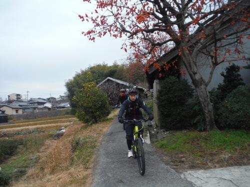 山之辺の道 サイクリング_b0332867_20283888.jpg
