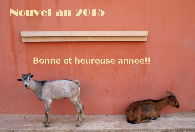 Nouvel an 2015!!!!! *2月のセネ飯WSのお知らせも☆_b0207873_16531664.jpg