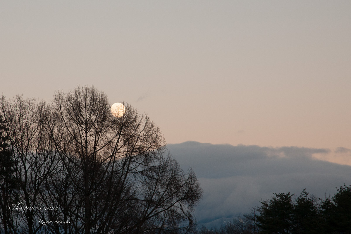 December of afterglow_c0137403_1541989.jpg