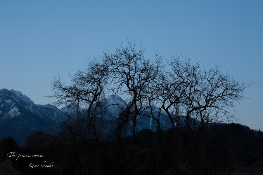 December of afterglow_c0137403_1543316.jpg