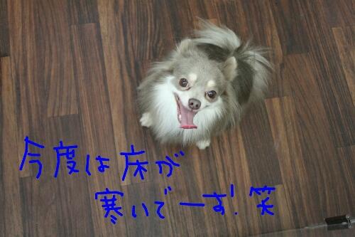 家族_b0130018_13383277.jpg