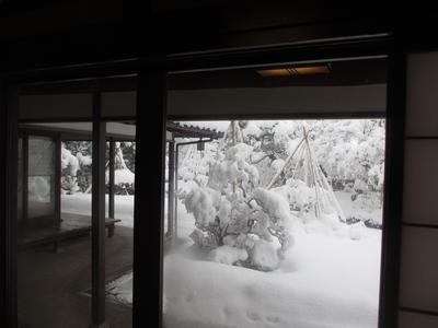 雪の山中ー①_f0289632_1614378.jpg