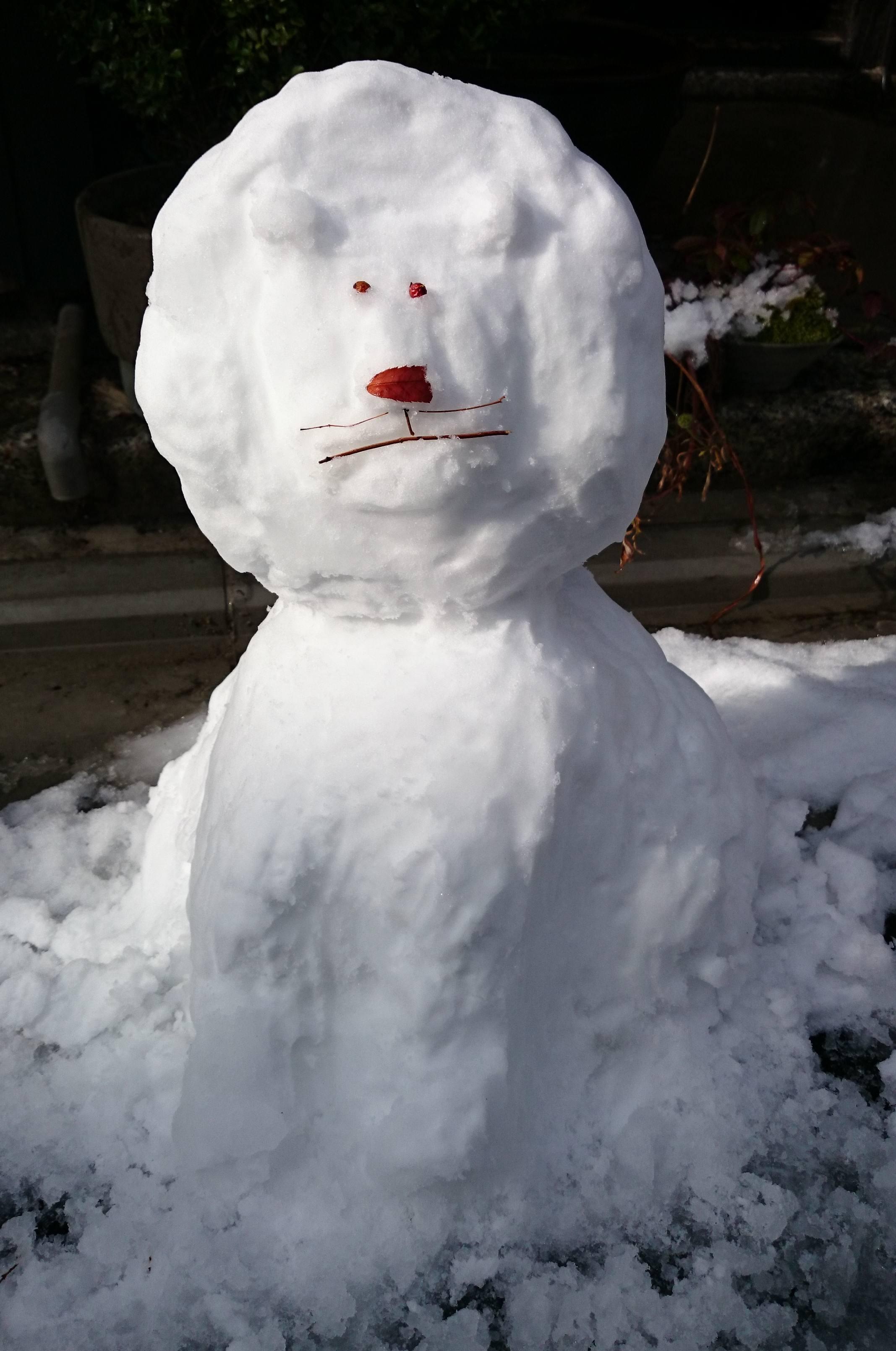 大雪のなか、ご来場ありがとうございました_a0265743_012975.jpg