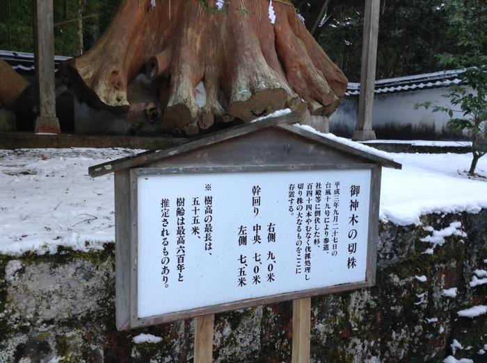 湯布院の宇奈岐日女神社_f0183846_22592478.jpg