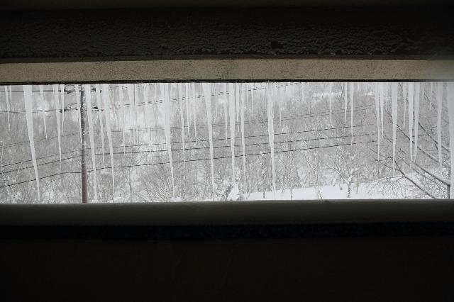 2015お正月SKI --石の湯ホテル 志賀高原 with 初音ミク  --_b0078651_1541332.jpg
