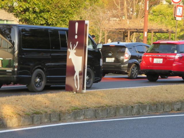 奈良へ_c0001670_19301037.jpg