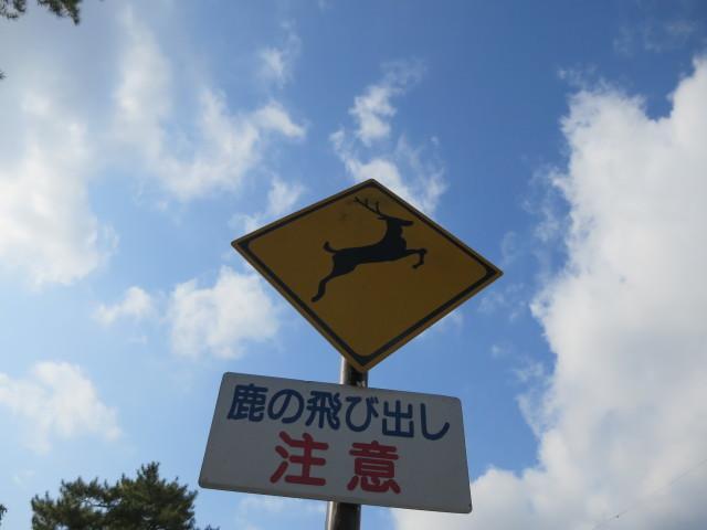 奈良へ_c0001670_19331550.jpg