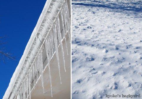 白x青の雪景色_b0253205_03490245.jpg