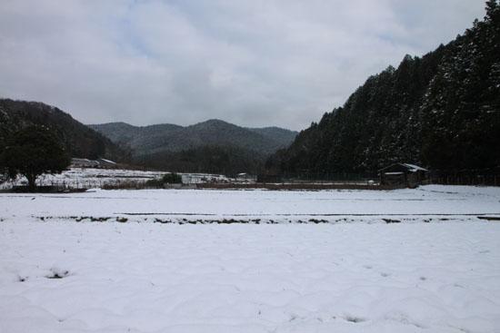 菜園は大雪_e0048413_18144417.jpg