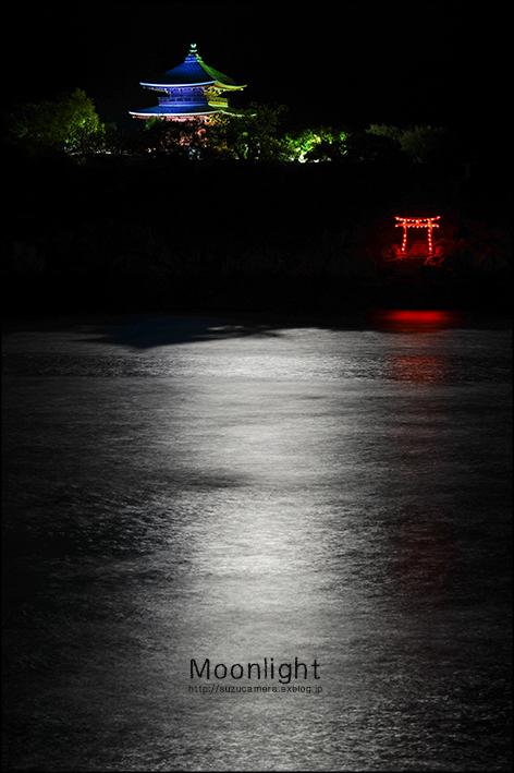 月あかり_f0100215_0224771.jpg