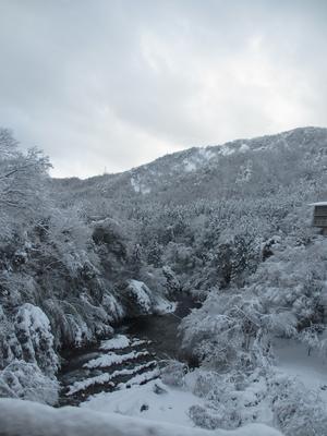 雪の山中ー②_f0289632_11255772.jpg