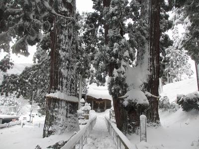 雪の山中ー②_f0289632_1125947.jpg