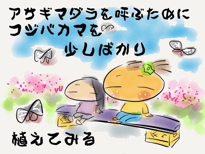 f0183846_16555895.jpg