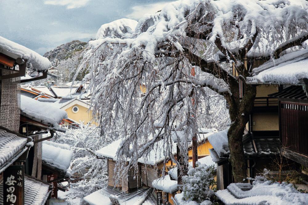 雪景色 京都  <東山>_f0021869_22184724.jpg