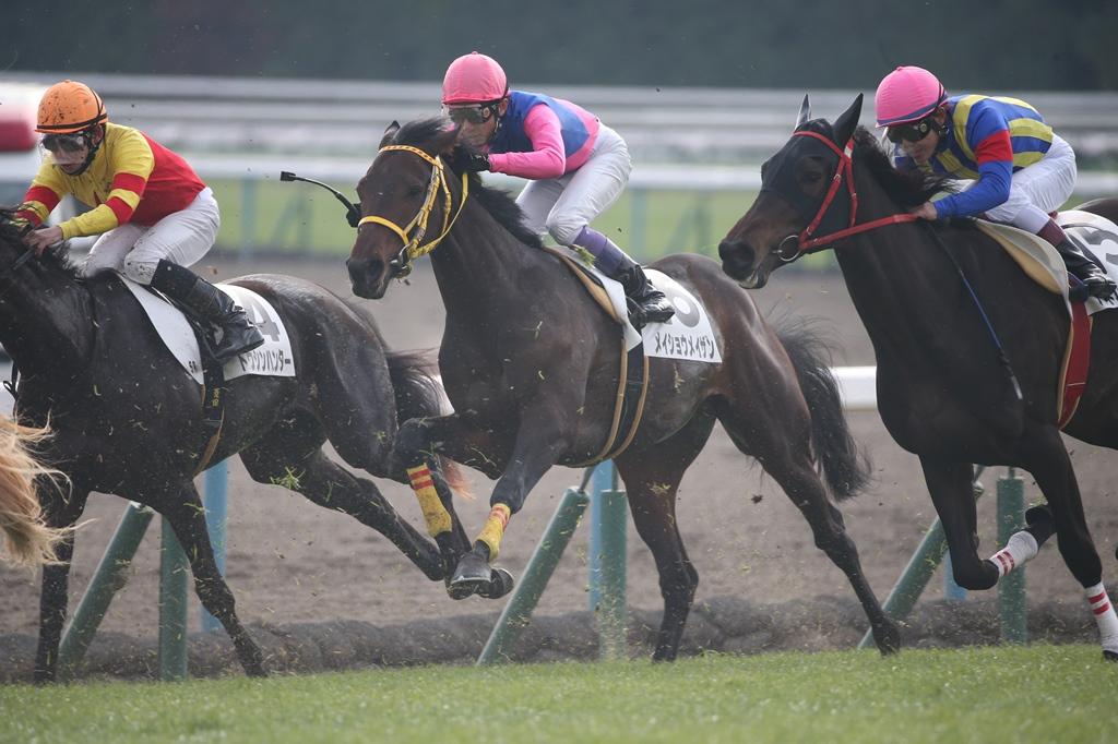 2015年1月4日 京都金杯(GⅢ)_f0204898_17059.jpg