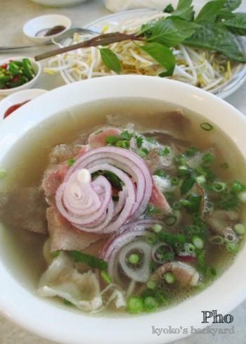 ひさしぶりのベトナム麺。ガソリンの話。_b0253205_05213531.jpg