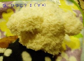 b0200310_1233465.jpg