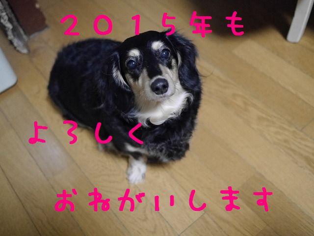 f0282319_183469.jpg