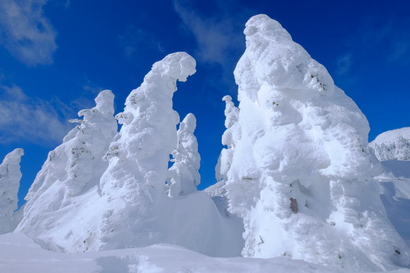 樹氷_c0167028_1946371.jpg