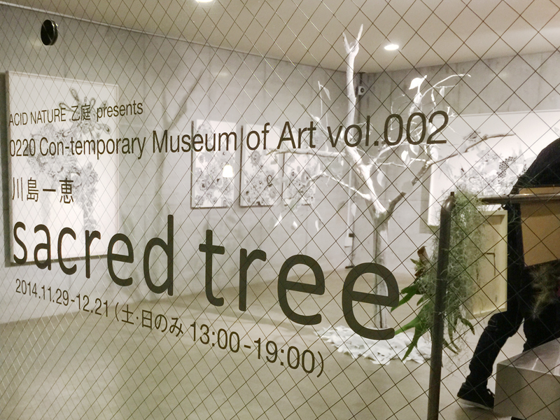 OCMA vol.002 川島一恵 「sacred tree」展 展覧会記録_f0191870_11365299.jpg