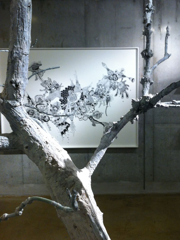 OCMA vol.002 川島一恵 「sacred tree」展 展覧会記録_f0191870_1242446.jpg