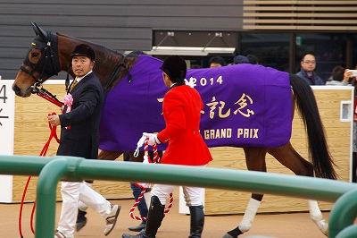 2014年度JRA賞発表、年度代表馬はジェンティルドンナ_b0015386_21515941.jpg