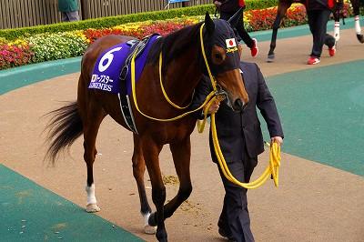 2014年度JRA賞発表、年度代表馬はジェンティルドンナ_b0015386_2152355.jpg